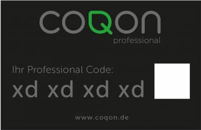 coqon Upgrade auf Handwerker - COQON-Qbox-Basis zu einer COQON-Qbox-Professional aufrüsten - 1